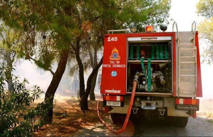 Ήπειρος: Αυξημένη ετοιμότητα για την πρόληψη των πυρκαγιών από Περιφέρεια- Δήμους- συναρμόδιους φορείς